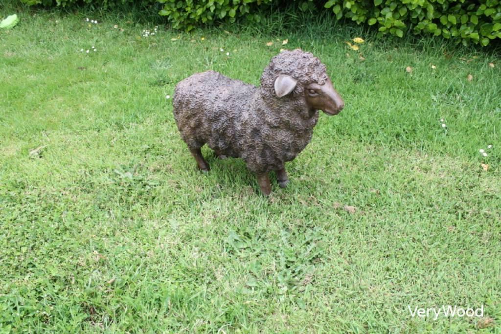 Lys deco cot jardin mouton - Deco jardin mouton toulon ...